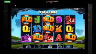 Online Slot Bonus Compilation - Cleopatra, Kingdom of Legends and More