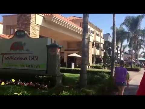 The Disneyland Fam Walks from Howard Johnson Anaheim to Disneyland showing all hotels on way