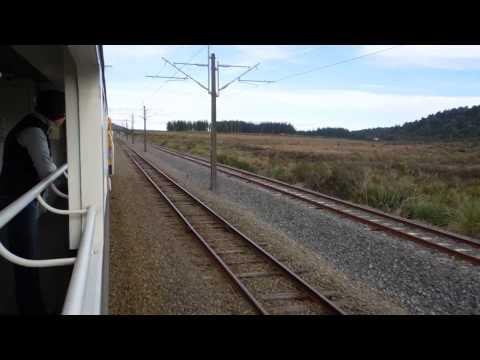 ニュージーランド・キウイレール「ノーザンエクスプローラー」車窓
