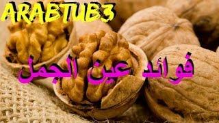 فوائد عين الجمل // الجوز - ArabTub3