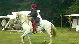 poursuite a cheval