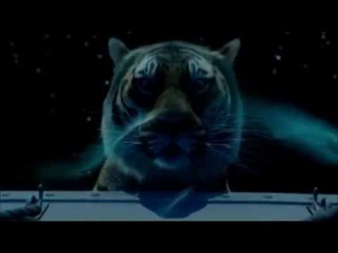 Xxx Mp4 Life Of Pi Most Beautiful Scene 3gp Sex