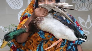 Village Food Cooking Duck & Rice Flour Recipe How To Cook Duck Curry Yummy Village Style DUCK Recipe