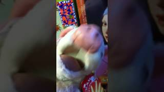 Pig licks girl with pearl earring - puppet shopping