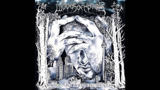 Woods of Ypres - Keeper of the Ledger