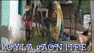 Village Life   Indian Village Life   Krishna Vlogs