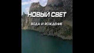 Новый свет. Вода и рождение (1992) фильм