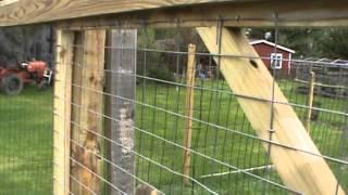 chicken run:    with gate to alternating runs