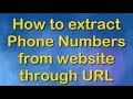 📌 How to Extract Phone Numbers From Websites? 📌