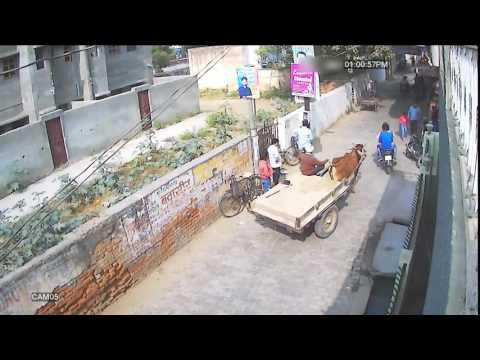 live theft preparation cctv footage | chori ka live video india