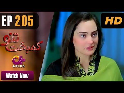Drama   Kambakht Tanno - Episode 205   Aplus ᴴᴰ Dramas   Shabbir Jaan, Tanvir Jamal, Sadaf Ashaan