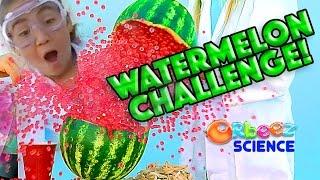 ORBEEZ Exploding Watermelon Challenge - Orbeez Science | Official Orbeez
