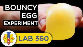 How To Make Bouncy Egg