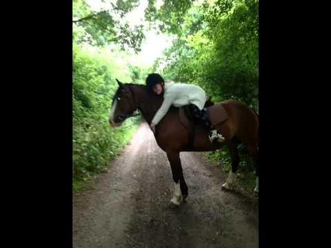I love you so much lucy pony xxxx