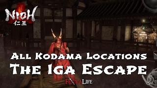 All Kodama Locations The Iga Escape (Nioh)