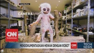 Mirip Banget! Begini Caranya Mendokumentasikan Hewan dengan Robot - TechNews