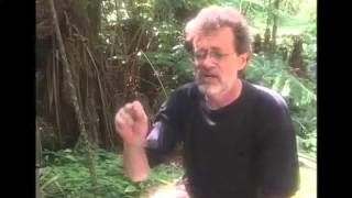 Terence Mckenna - Why our percetion of time is speeding up