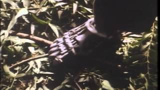 Cyborg Cop Trailer 1993