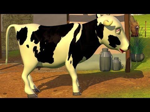 Señora Vaca Canciones Infantiles de la Granja