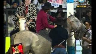 Festival Jesús María 11-01-11 Doma, jinetes y payadas