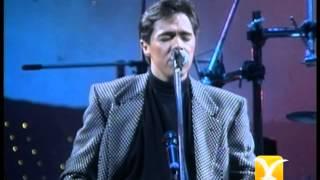 Los Temerarios, Mi Corazón Te Quiere, Festival de Viña 1993