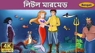 Little Mermaid in Bengali - Rupkothar Golpo - Bangla Cartoon - 4K UHD - Bengali Fairy Tales
