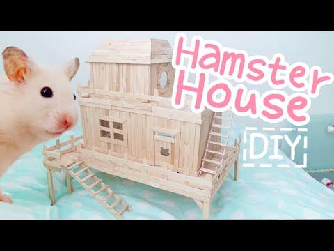 Look hamster mobile sex