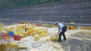 Tons of eggs spill onto a highway in east China