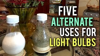5 Incredible Uses for Old Light Bulbs