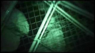 The Cove (2009) trailer