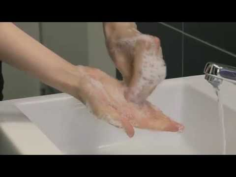 Xxx Mp4 WHO How To Handwash With Soap And Water 3gp Sex
