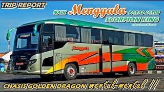 TRIP REPORT - NYAMANNYA NAIK MENGGALA SCORPION KING GOLDEN DRAGON AIRSUS   PATAS JATIM SBY-MLG