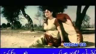 SAIMA   SHAN   YouTube3