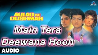Aulad Ke Dushman : Main Tera Deewana Hoon Full Audio Song | Ayesha Jhulka, Arman Kohli |