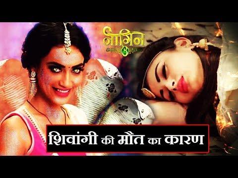 Xxx Mp4 Main Reason Behind Killing Shivangi Naagin 3 Latest Update NAAGIN 3 3gp Sex
