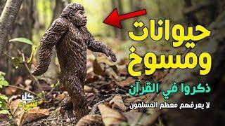 أغرب الحيوانات التي ذكرت في القرآن الكريم.. ٢٧ صنف لم تكن تعلم عنهم شيئا