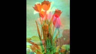 Bondhu hote cheye tomar (Original) -  Subir Nandi