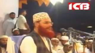 Allama Saydee