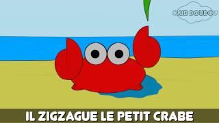 Il zigzague le petit crabe