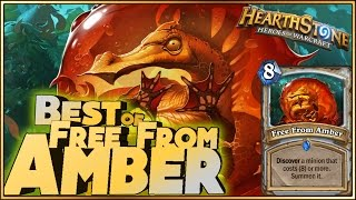 Hearthstone - Best of Free From Amber - Funny and lucky Rng Moments