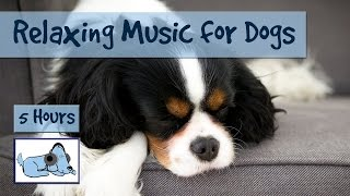 Over Five Hours of Relaxation Music for Dogs! Music to Help Your Dog Relax While You're Away