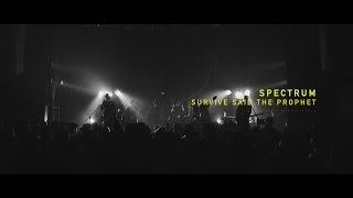 Survive Said The Prophet - Spectrum   Official Live Music Video