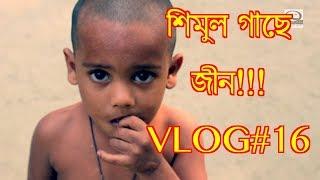 শিমুল গাছে জীন!!! VLOG #16 | Tangail tour to see Jinns|TRAVEL VLOG|MUSLIMIZATIONTV