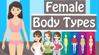 Female Body Types And Body Shapes  Different Body Types Women Have