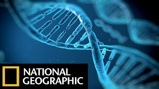 DNA Genesis - The Children Of Adam - National Geographic Documentary Films - Full HD Documentaries