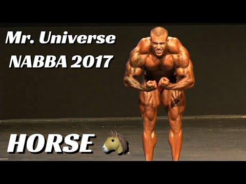 Xxx Mp4 Horse MD No Mr Universe NABBA 2017 Apresentação Individual E Confronto Do Pré Julgamento 3gp Sex