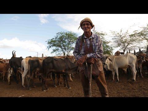 Filme Missa do Vaqueiro Agroquima