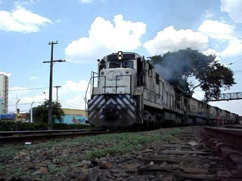 Cruzamento de trens da ALL Americana SP