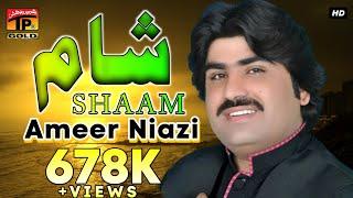 Shaam - Ameer Niyazi - Latest Punjabi And Saraiki Song 2016 - Latest Song 2016