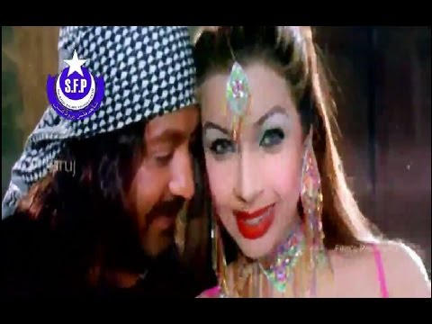 Xxx Mp4 Shahid Khan Sahar Khan Nazia Iqbal Pashto Song Gungro Mi Shor Shor HD Quality 720p 3gp Sex